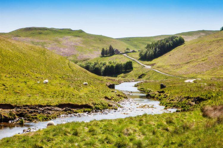 Cheviot Hills Northumberland Holidays