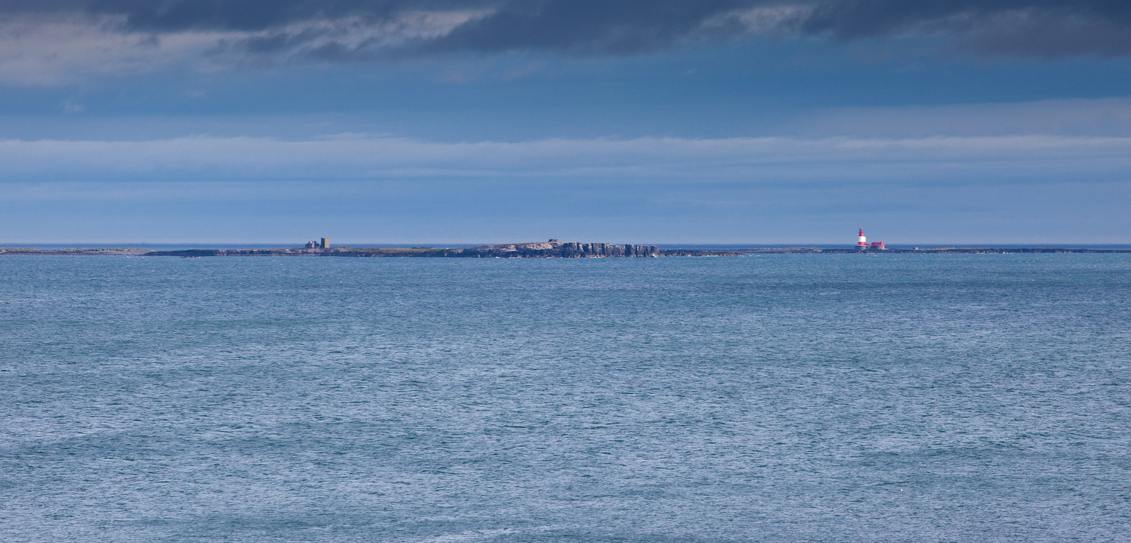 farne islands northumberland
